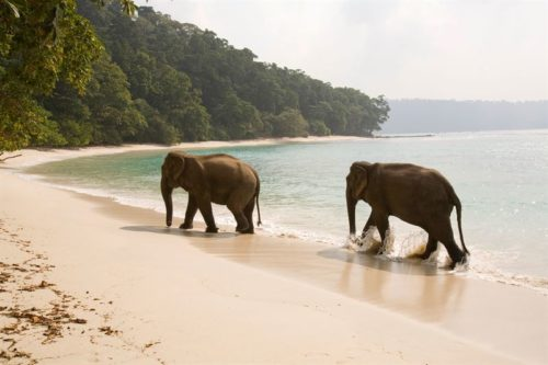 Havelock Island, Indien.