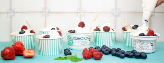lag din egen frozen yogurt