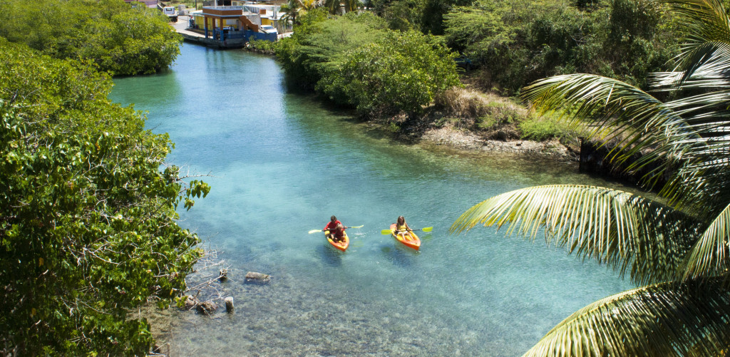 Kayaking - Dewey Culebra